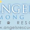 angels-rescue-logo-blue-sm